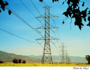Powerlines, CA Article Caption